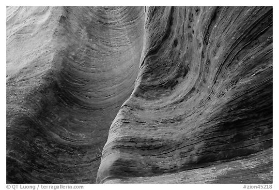 Detail of rock wall eroded by water. Zion National Park (black and white)