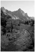 Virgin River and Watchman, sunset. Zion National Park, Utah, USA. (black and white)