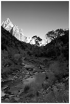 Virgin River and Court of the Patriarchs, early morning. Zion National Park, Utah, USA. (black and white)