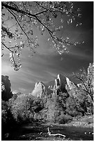 Court of the Patriarchs and Virgin River, mid-day. Zion National Park ( black and white)