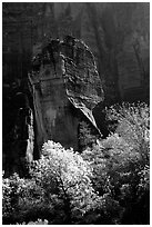 The Pulpit, temple of Sinawava, late morning. Zion National Park, Utah, USA. (black and white)