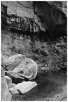 Boulders in  Third Emerald Pool. Zion National Park ( black and white)