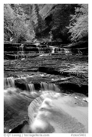 Archangel Falls in autumn, Left Fork of the North Creek. Zion National Park (black and white)