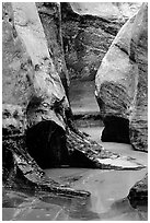 Pools and Rock walls sculptured by fast flowing water,  Subway, Left Fork of  the North Creek. Zion National Park, Utah, USA. (black and white)