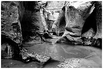 Pools and rock walls sculptured by fast flowing water, the Subway, Left Fork of the North Creek. Zion National Park, Utah, USA. (black and white)