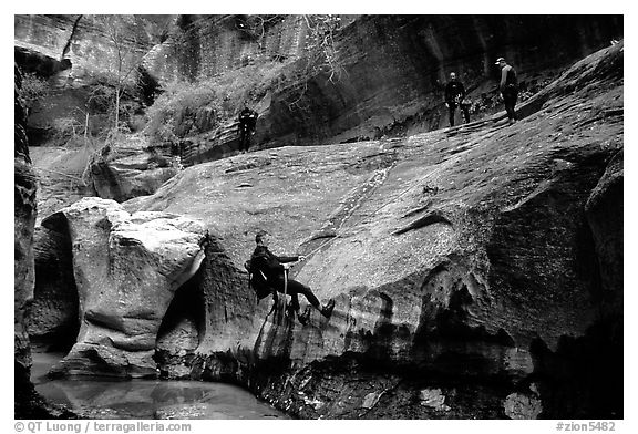 Canyoneers in wetsuits rappel down walls of the Subway. Zion National Park (black and white)