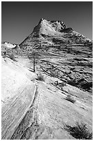 Sandstone swirls, Zion Plateau. Zion National Park, Utah, USA. (black and white)