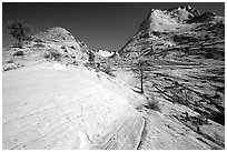Sandstone circular striations, Zion Plateau. Zion National Park, Utah, USA. (black and white)
