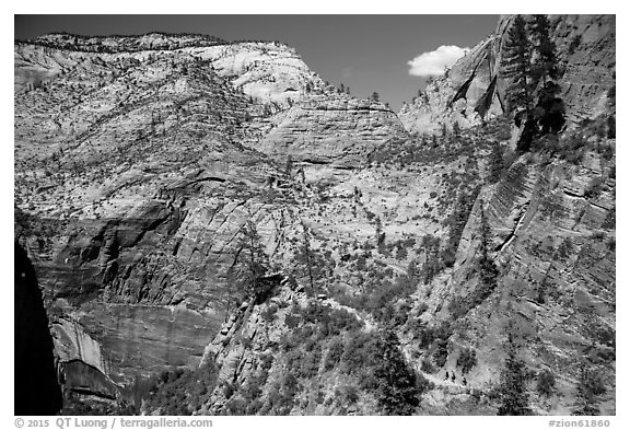 Distant hikers on Hidden Canyon trail. Zion National Park (black and white)