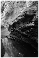 Glowing canyon wall reflected in pool, Mystery Canyon. Zion National Park ( black and white)