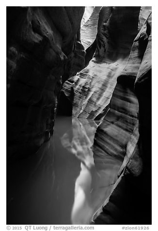 Slot canyon reflections, Pine Creek Canyon. Zion National Park (black and white)
