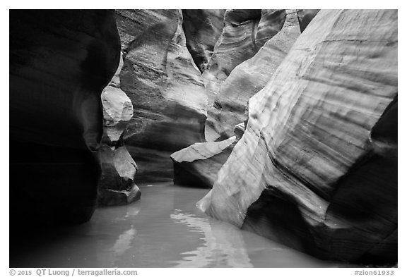 Slot canyon narrows and reflections, Pine Creek Canyon. Zion National Park (black and white)