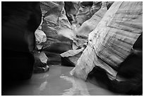 Slot canyon narrows and reflections, Pine Creek Canyon. Zion National Park ( black and white)