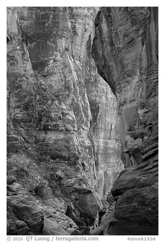 Pine Creek Canyon walls. Zion National Park (black and white)