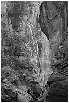 Pine Creek Canyon walls. Zion National Park ( black and white)