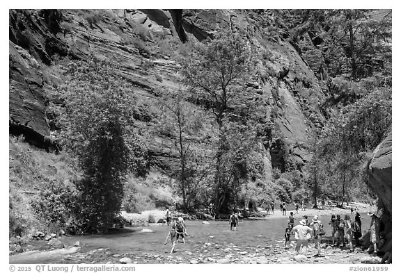 Crowds at the start of the Narrows hike. Zion National Park (black and white)