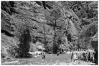 Crowds at the start of the Narrows hike. Zion National Park ( black and white)