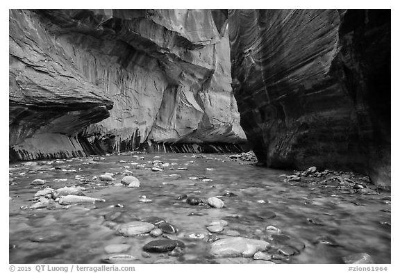 Bend of the Virgin River in the Narrows. Zion National Park (black and white)