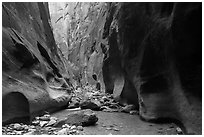Orderville Narrows. Zion National Park ( black and white)