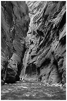 Hikers silhouettes, Virgin River Narrows. Zion National Park ( black and white)