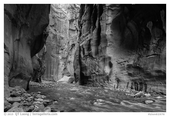 Virgin River between steep and tall walls of the Narrows. Zion National Park (black and white)