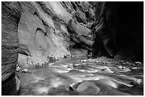 Virgin River flows over boulders under soaring walls of the Narrows. Zion National Park ( black and white)