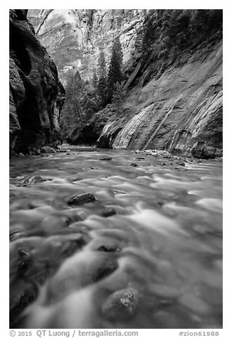 The Virgin River below Mystery Falls, the Narrows. Zion National Park (black and white)