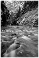 The Virgin River below Mystery Falls, the Narrows. Zion National Park ( black and white)