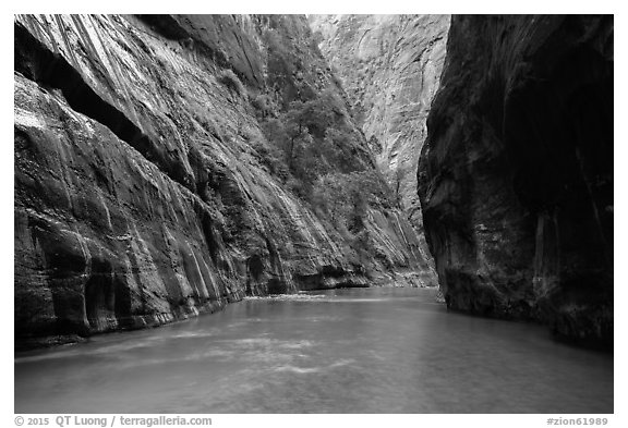 Placid and wide section of Virgin River between cliffs, the Narrows. Zion National Park (black and white)