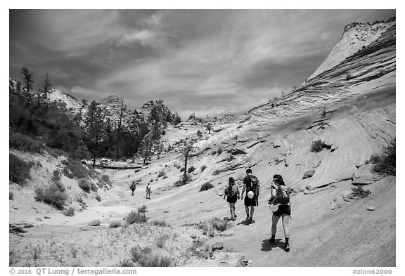 Hikers on slickrock. Zion National Park (black and white)