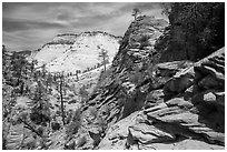 Slickrock landscape, East Zion. Zion National Park ( black and white)