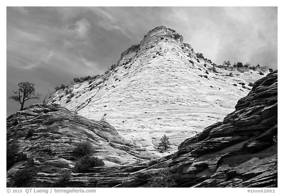 White cliffs towering over red cliffs, East Zion. Zion National Park (black and white)