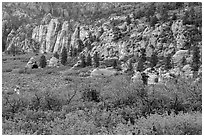Hop Valley. Zion National Park ( black and white)