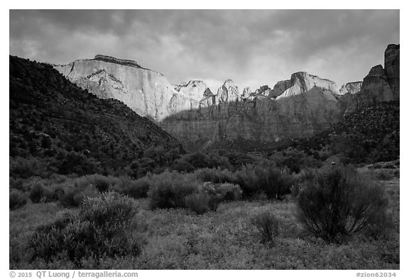 Towers of the Virgin, stormy sunrise. Zion National Park (black and white)