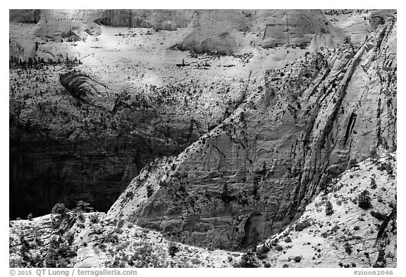 Dappled light on White Cliffs. Zion National Park (black and white)
