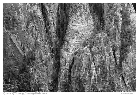 Distant view of Hidden Canyon trail. Zion National Park (black and white)