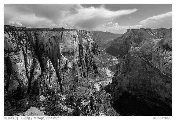 Zion Canyon from Observation Point. Zion National Park (black and white)