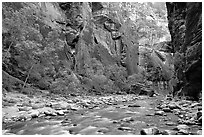 Virgin River flowing over stones in the Narrows. Zion National Park ( black and white)