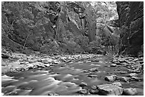 Virgin River in  Narrows. Zion National Park ( black and white)