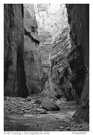 Tall walls in the Narrows. Zion National Park (black and white)