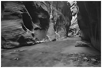 Dark canyon at Wall Street, the Narrows. Zion National Park ( black and white)
