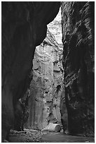 Section of the Narrows called Wall Street. Zion National Park, Utah, USA. (black and white)
