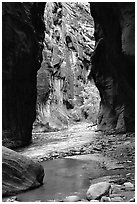 Wall Street, the Narrows. Zion National Park, Utah, USA. (black and white)