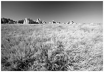 Tall grass prairie near Cedar Pass. Badlands National Park, South Dakota, USA. (black and white)