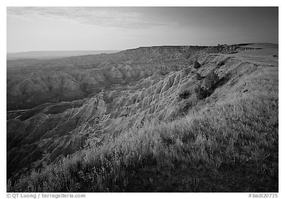 Prairie grasses and erosion canyon at sunrise, Stronghold Unit. Badlands National Park (black and white)