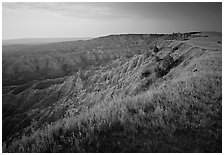 Prairie grasses and erosion canyon, southern unit, sunrise. Badlands National Park, South Dakota, USA. (black and white)