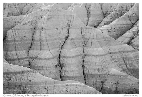 Paleosols fossil soils mixed with Brule Formation. Badlands National Park (black and white)