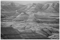 Delicately colored badlands and prairie at sunrise. Badlands National Park, South Dakota, USA. (black and white)