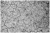 Cracks in yellow fossil soil. Badlands National Park, South Dakota, USA. (black and white)