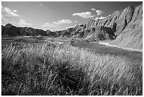 Grasses and badlands in Conata Basin. Badlands National Park, South Dakota, USA. (black and white)